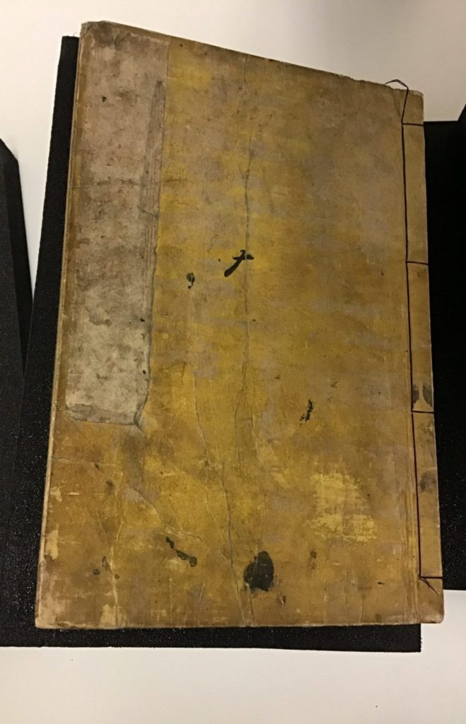 Brown book with black and tan spots and incised lines and a black shadow.