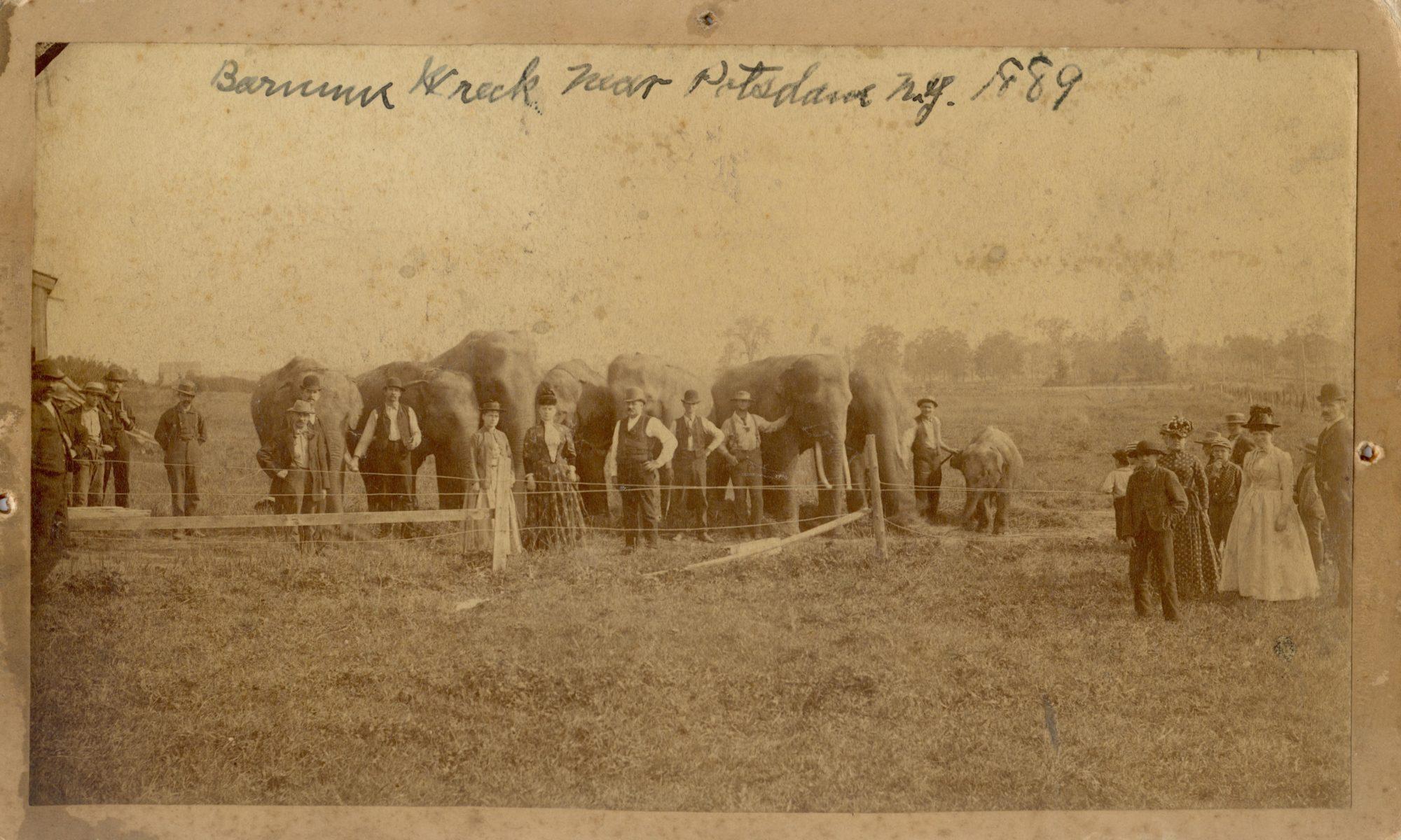 Nineteenth century people standing near elephants