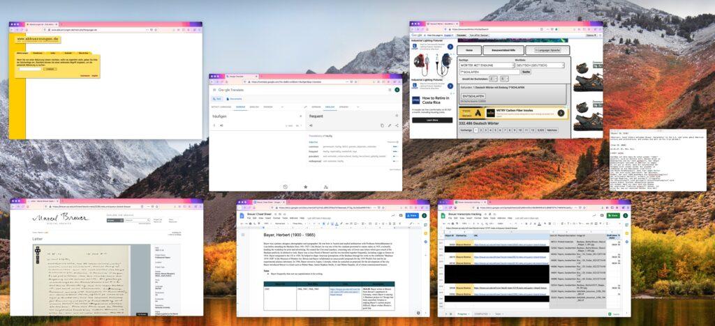 Screenshot of various computer windows open.