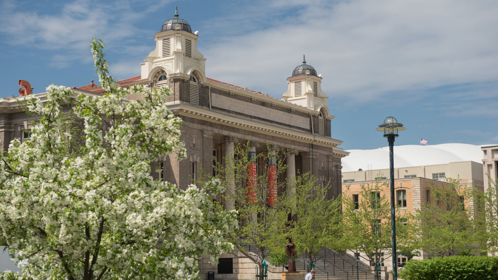 Springtime exterior view of Carnegie Library with blossoming trees